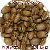 自家焙煎コーヒー豆ストレートコーヒー【カリビアンマウンテン】100g【10P06may13】【RCP】