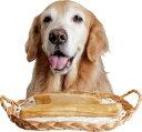 ストロングチーズ【犬のおやつ】<あす楽対応>