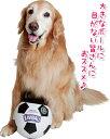 ジャンボール【大型犬用おもちゃ】<あす楽対応>