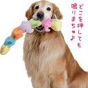 キャタピー【犬用おもちゃ】<あす楽対応>