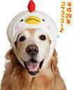 [お正月・年賀グッズ]酉(トリ)かぶり【大型犬向け】<あす楽対応>