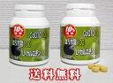 『10%増量CoQ10 100・αリポ酸 100・L-カルニチン 1000 2個セット』 5000円(税別)以上で送料無料