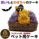 即日発送 ハロウィンケーキ 猫用 紫芋とかぼちゃのケーキ 数...