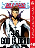 BLEACHカラー版48