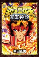 聖闘士星矢NEXTDIMENSION冥王神話9