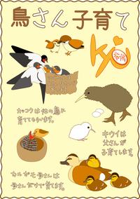 鳥さん子育て