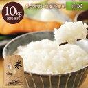 ショッピング10kg 九州熊本産 無農薬栽培サン・ファーム米 白米10kg 送料無料