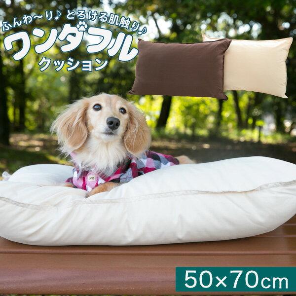 ワンダフルクッション(人・ペット兼用)50×70cm|クッションペット用品ペットベッド枕ピローベット