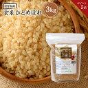 《ポイント5倍》 玄米 ひとめぼれ 3kg 送料無料 岩手県産 令和2年産 《3kg》 米 お米 3