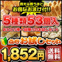 【あす楽】【初回限定】【送料無料】5種類53個入り!点心お試...
