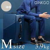 GINKGOシリーズ Mサイズ