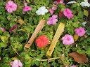 金運アップ・開運財布専門店 「財布屋」 日本の財布職人が作る開運の財布 幸せの貯まる財布 ストラップ