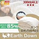 【日本製】アースダウン無地 ナチュラル羽毛 合掛け布団 キングサイズニューゴールドラベル