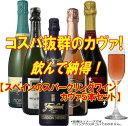コスパ抜群のカヴァ!飲んで納得!【スペインのスパークリングワイン・カヴァ5本セット】
