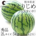 送料無料 熊本県産 ひとりじめ(小玉すいか) 秀品 2Lサイズ 2.5キロ×2玉 化粧