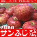 送料無料 青森県産 サンふじ りんご 3kg 大玉