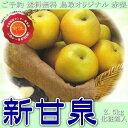 ご予約 送料無料 鳥取オリジナル 赤梨 新甘泉 しんかんせん 2.5kg 化粧箱入