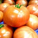 ちと珍しいCBCのめちゃうまい桃太郎トマト約4kg