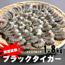 ブラックタイガー 無頭エビ 殻付き 大サイズ 1.8kg アイスブロック [21/25サイズ以上]
