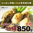 広島県産 大粒 カキ 2Lサイズ NetWt 850g (加熱用生牡蠣)