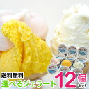 《テレビ・雑誌で話題》選べるジェラート12個セット【送料無料...