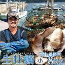生ガキ 生牡蠣 小 8kg 56-96個入 殻付き 生食用 生カキ 宮城県産 お取り寄せ バーベキュー