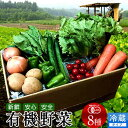 ショッピングスムージー 日本の有機野菜セット 旬のおまかせ8種類 全国ご当地生産者のこだわり有機栽培 ベジタブル スムージー 野菜材料【送料無料】
