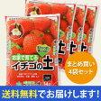 【送料無料】[自然応用科学]イチゴの土/14リットル [×4袋セット][いちご][培養土] 【smtb-TK】【tk0216f】