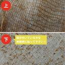 簡単!地面に芝シートを貼るだけで緑の西洋芝が育ちます。広い場所や斜面施工におすすめです。【送料無料】ぴたっと貼るだけ!西洋芝(芝生シート)[10m分ロールタイプ] [芝生] 【smtb-TK】