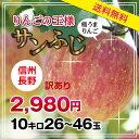 【送料無料】長野県産 りんご 訳あり 10kg サンふじ 産...