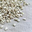 <令和2年>【送料無料】富山県産 黒米(古代米) / 30kg(業務用紙袋) [生産者直販のおいしい健康食]