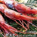 【訳あり】甘エビ(赤エビ)[特大][冷凍]1kgセット【送料無料】
