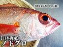 【塩焼き・煮つけに♪加熱用】【スピード出荷】日本海産ノドグロ(赤むつ)[生] 1匹(150-180g前後)【塩焼き・煮つけ♪】