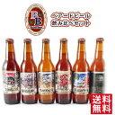 【ラッキーシール対応】お歳暮 ギフト クラフトビール 飲み比...