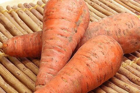Organic or natural farming carrots about 5 kg