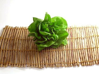 Organic or natural farming lettuce one piece