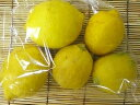 K. shichiro Grandpa lemon 500 g * size mixture