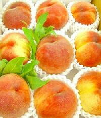 Nakazawa's miracle peach (or) 5 kg * ships early August