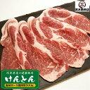 豚肉 肩ロース焼肉 500g けんとん豚 岐阜県 BBQ 焼肉 バーベキュー 豚肉 ぶた肉 ブタ肉