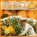 【ブランド京野菜】 京都府産 壬生菜