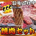 【送料込み】亀山社中 おためし 焼肉セット(華咲きハラミ・やわらかカルビ合計600g) ⇒【あす楽】【RCP】(ギフト プレゼントにもどうぞ)