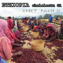 エチオピアチェレレクトG1300g送料無料いちごのような甘い香り!香るナチュラルモカ 華やか〜
