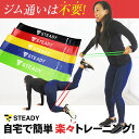 STEADY(ステディ)トレーニングチューブ 強度別5本セット 収納ポーチ・日本語トレーニング動画付...
