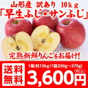 予約注文 訳あり 山形県産りんご 10kg 送料無料 サンふ...