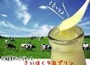 【日本最北の地からお届け】特選素材しか使用してない極上品★さいほくの牛乳プリン♪【楽ギフ_のし宛書】【楽ギフ_メッセ入力】