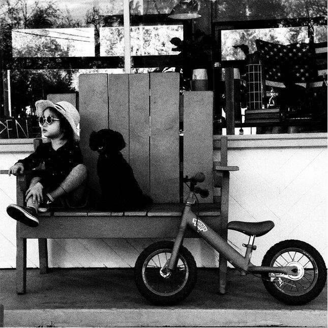 ... 自転車/子供用)【レビューを