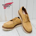 RED WING Work Oxford Maize Ablene Rough Out ( 8105 )