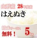 新米!はえぬき 山形産 28年 5kg 玄米【送料無料】精米無料 白米・無洗米・分づき(ぶづき)ポイント2倍