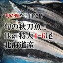 希少なる特大秋刀魚 約180-200g!サンマ 北海道産[築...