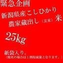 【送料無料】平成29年度【新米】新潟県産BL米25キログラム生産農家が直接配送する縁故米、 一番美味しい農家蔵出し【限定】新之助プレゼント
